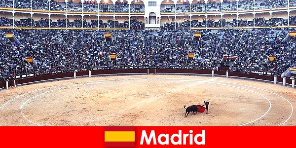 Традиционните фестивали в Мадрид изумяват всеки непознат