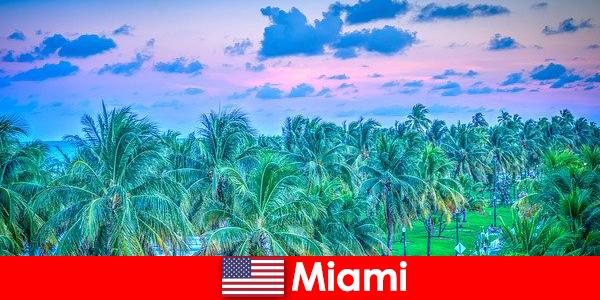 Природата в Маями спираща дъха с голяма тропическа пустиня