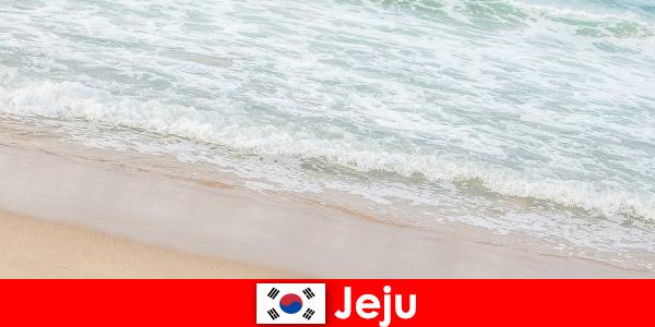Чеджу със своя фин пясък и чиста вода е идеалното място за семейна почивка на плажа