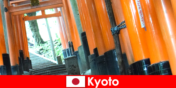 Рибарското селище Киото в Япония предлага различни атракции на ЮНЕСКО