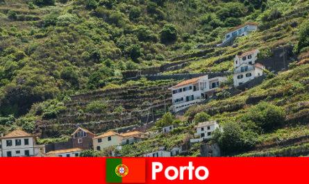 Дестинация за почивка в Порто за любителите на виното от цял свят