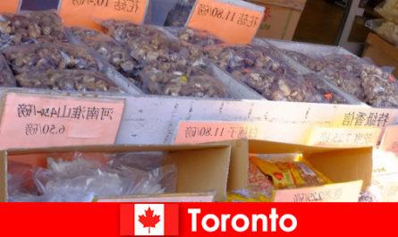 Торонто и неговата особено разнообразна гастрономия не оставят никой пътешественик да гладува