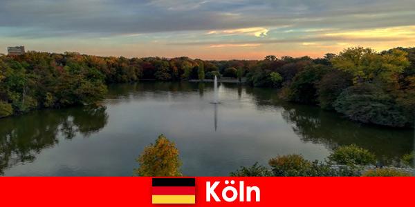 Природа пътуване през гори, планини и езера в природните паркове на Кьолн Германия