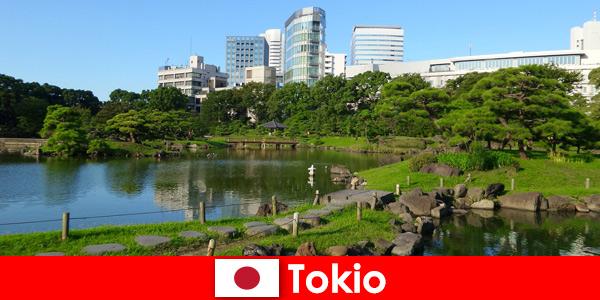 Туристите се радват на стари и нови традиции в Токио, Япония отблизо