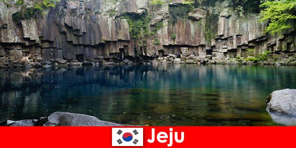 Екзотично пътуване на дълги разстояния до красивия вулканичен пейзаж на Чеджу Южна Корея