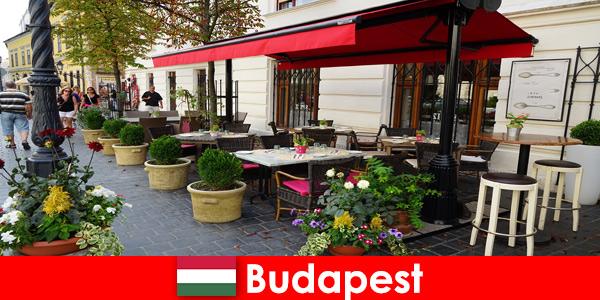 Дестинация за кратка ваканция в Будапеща Унгария за посетители с вкус към престижна гастрономия