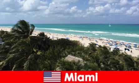 Пясъчни вълни от палмови дървета очакват дългосрочно летуващите в райския район Маями в САЩ